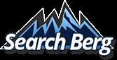 SearchBerg.com Logo